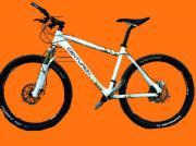 2 Mountainbike`s