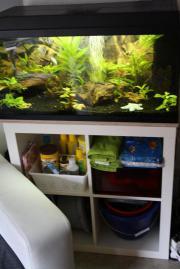 Aquarium 110 liter