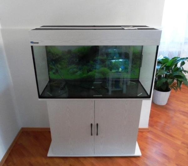 aquarium 180l von mp inklusive zubeh r und eheim pumpe 2013 in freilassing fische aquaristik. Black Bedroom Furniture Sets. Home Design Ideas
