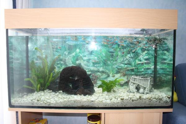 aquarium 200l mit fischen und unterschrank in. Black Bedroom Furniture Sets. Home Design Ideas