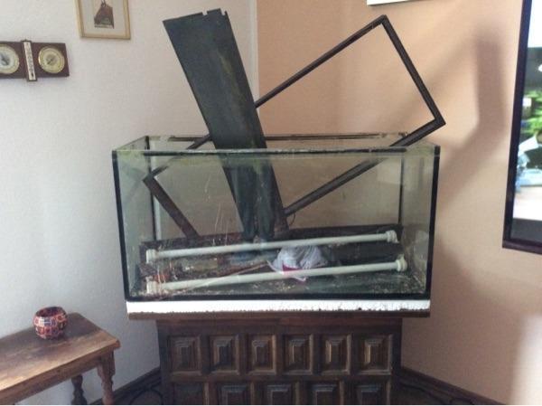 aquarium gebraucht in zirndorf fische aquaristik kaufen. Black Bedroom Furniture Sets. Home Design Ideas