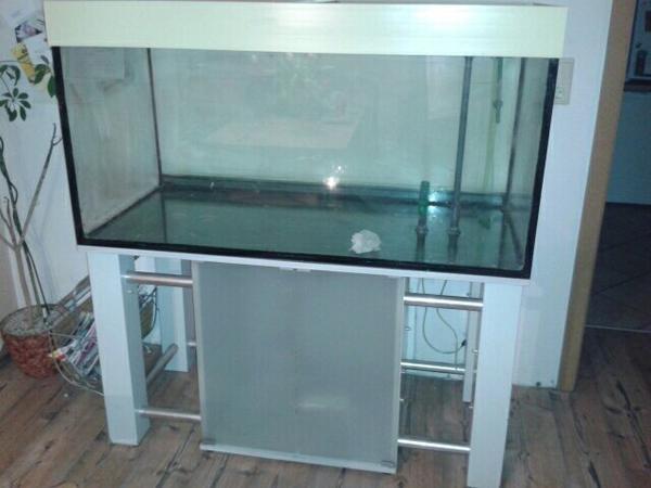 aquarium mit zubeh r in fischbach fische aquaristik. Black Bedroom Furniture Sets. Home Design Ideas