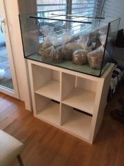 Aquarium plus Regal