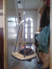 bouncer kinder baby spielzeug g nstige angebote. Black Bedroom Furniture Sets. Home Design Ideas