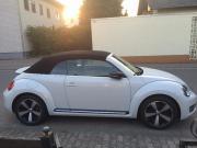 beetle fun car,