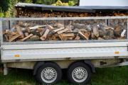 Brennholz frisch und