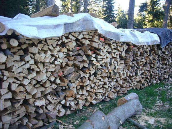 brennholz zu tauschen suche traktor oder verkauf in. Black Bedroom Furniture Sets. Home Design Ideas