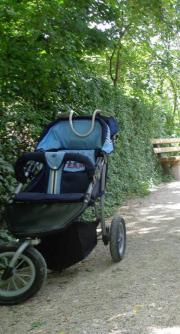 Buggy / Jogger
