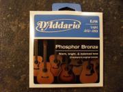 D`Addario Phosphor