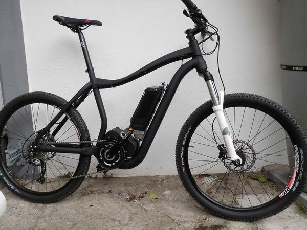 e bike mountainbike ave xh 5 in hamburg mountain bikes. Black Bedroom Furniture Sets. Home Design Ideas