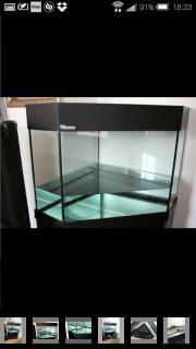 Eckaquarium - 120 Liter -