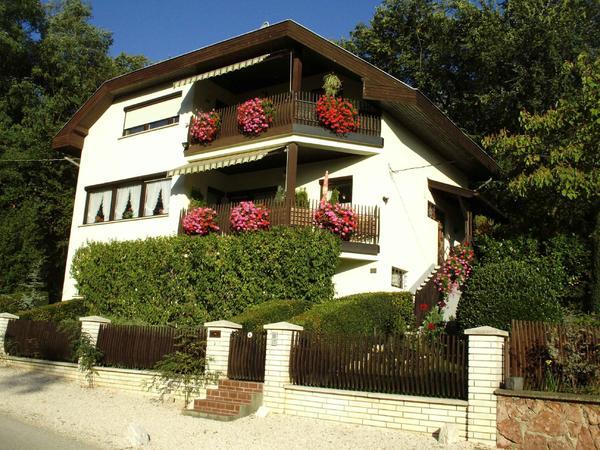 einfamilienhaus mit einliegerwohnung in ungarn in w rzburg 1 familien h user kaufen und. Black Bedroom Furniture Sets. Home Design Ideas
