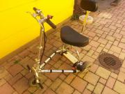 Elektro Scooter Dreirad