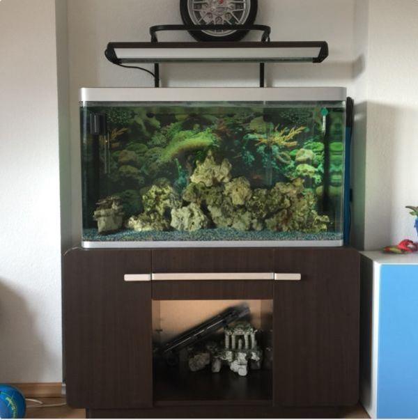 Aquarium 260 neu und gebraucht kaufen bei for Aquarium osaka 260