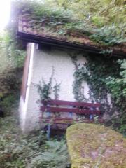 Freizeitgrundstück Kleiningersheim