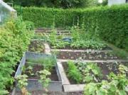 garten und landschaftbau