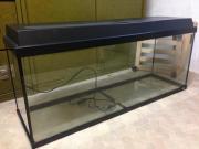 Gebrauchtes Aquarium 100