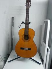 Gitarre von Pro