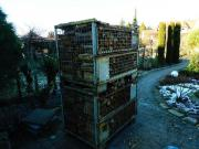 Gitterboxen Europool