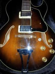 Halbakustische Gitarre Ibanez