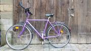 Herren Fahrräder