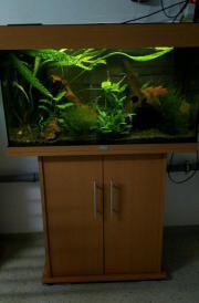 Juwel Aquarium komplett