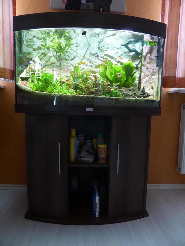 juwel aquarium vision 180 dunkelbraun umfang zubeh r in bruchsal fische aquaristik kaufen. Black Bedroom Furniture Sets. Home Design Ideas