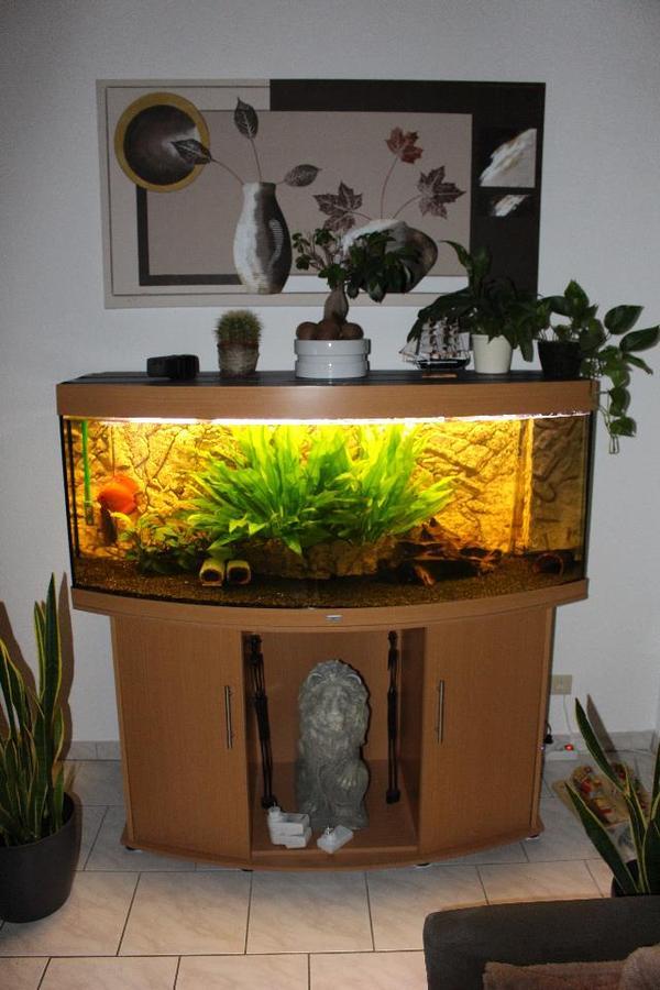 juwel vision 450l diskus becken in pforzheim fische aquaristik kaufen und verkaufen ber. Black Bedroom Furniture Sets. Home Design Ideas
