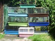 Käfige für Meerschweinchen