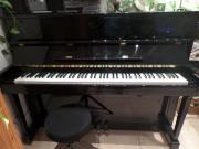 Klavier, Hohner Piano,