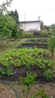 Kleingarten i Udestedt (