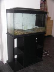 Komplett-Aquarium 120L