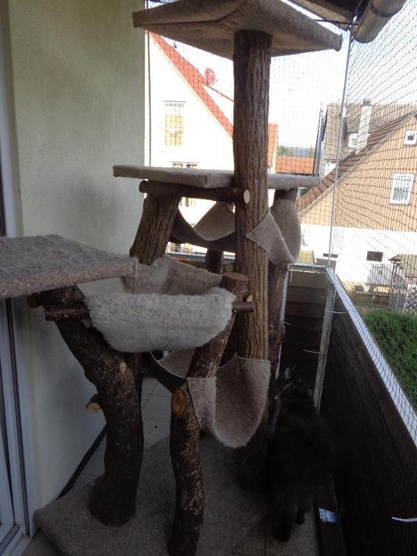 kratzbaum f r gro e katzen in esslingen kaufen und verkaufen ber private kleinanzeigen. Black Bedroom Furniture Sets. Home Design Ideas