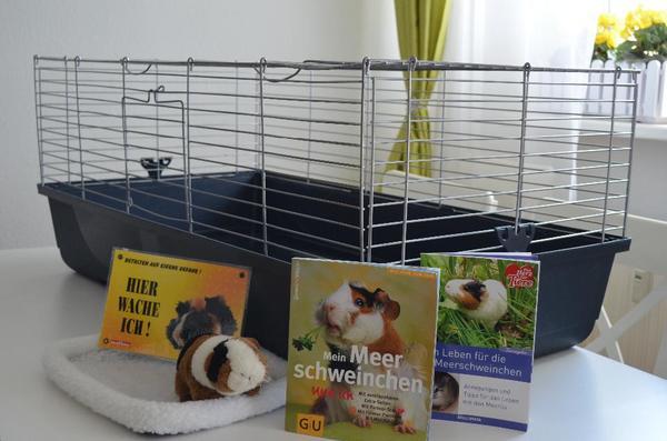 meerschweinchen nagerpaket k fig b cher pl schtier. Black Bedroom Furniture Sets. Home Design Ideas