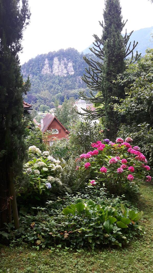 miete sehr gerne ihren bungalow in feldkirch vermietung h user kaufen und verkaufen ber. Black Bedroom Furniture Sets. Home Design Ideas