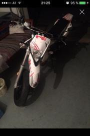 Moped: Derbi senda