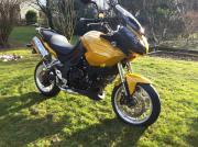 Motorrad Triumph Tiger1050