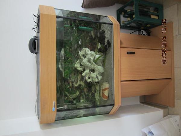 mp aquarium 6 eckig liter in ismaning fische aquaristik kaufen und verkaufen ber. Black Bedroom Furniture Sets. Home Design Ideas