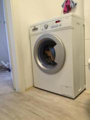 Neu! Waschmachine Haier