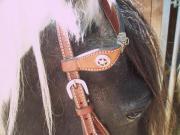 Pferde, Zubehör, Westernkopfstück ,