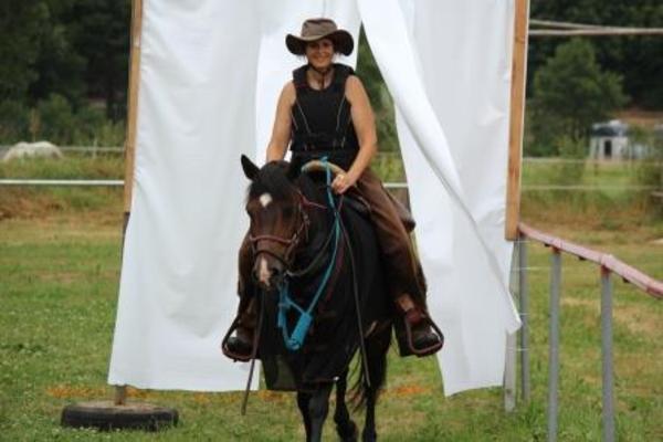 hallo ich suche eine pflege reitbeteiligung f r meine 4 pferde in 35325 m cke atzenhain es. Black Bedroom Furniture Sets. Home Design Ideas