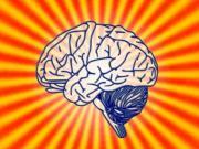Psychologie Lektorat Korrekturlesen