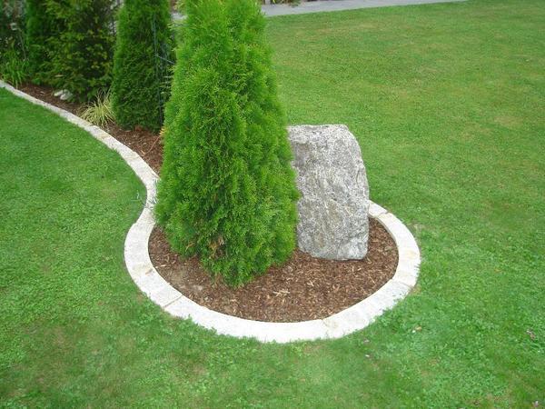 rasenkante beeteinfassung rasenkantensteine aus granit in neuburg sonstiges f r den garten. Black Bedroom Furniture Sets. Home Design Ideas