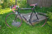 Rennrad Marke Rotwild