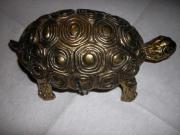 Schildkröte, Pillendose aus