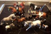 Schleich Sammlung Schleichpferde