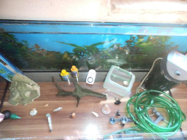 sch nes gro es aquarium mit zubeh r. Black Bedroom Furniture Sets. Home Design Ideas