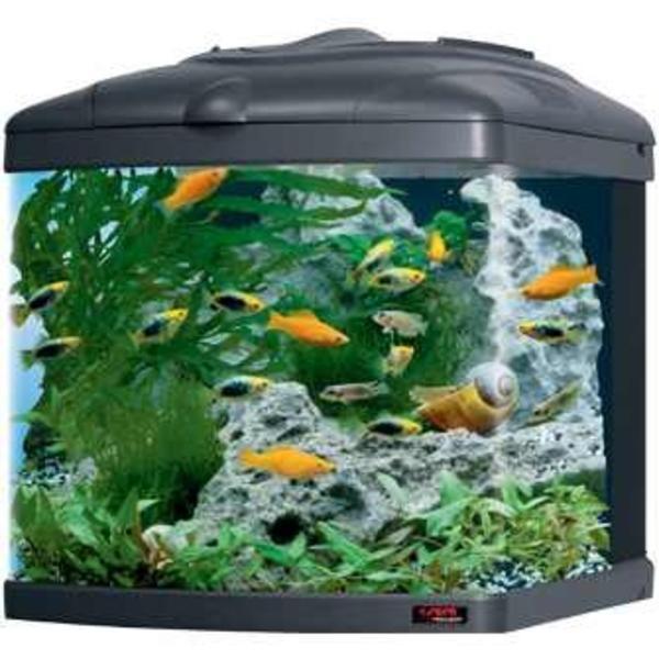 sera nano cube 60 liter aquarium in weissach fische aquaristik kaufen und verkaufen ber. Black Bedroom Furniture Sets. Home Design Ideas