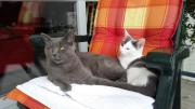 Teddy und Elli