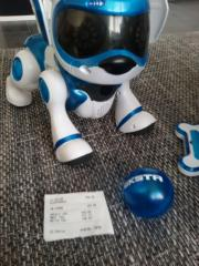 Teksta Roboter Hund!